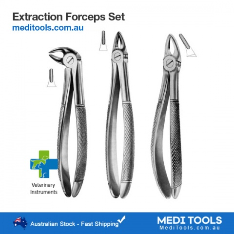 Small Incisors Forceps Veterinary