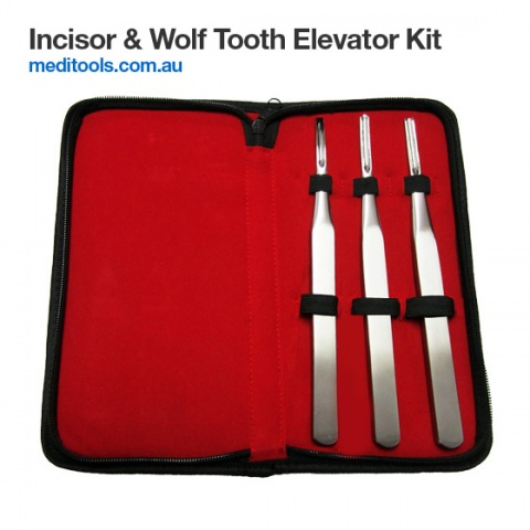 Incisors & Wolf Tooth Elevator Set