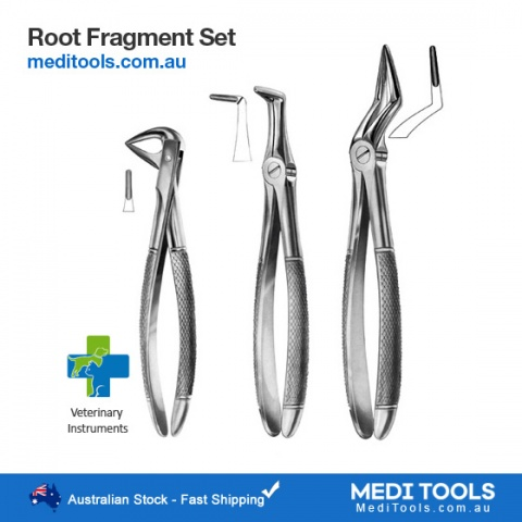 Extraction Forceps Set