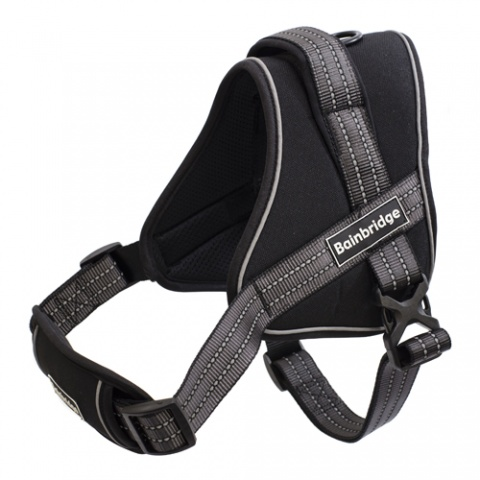 Reflective Rope Leash with Foam Handle