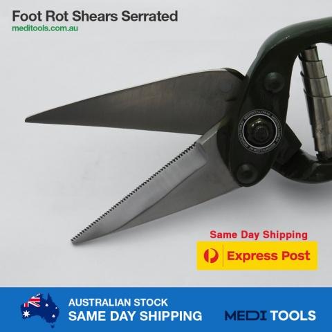 Foot Rot Shears